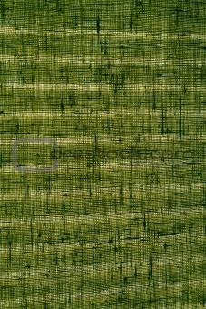 Green woven curtain