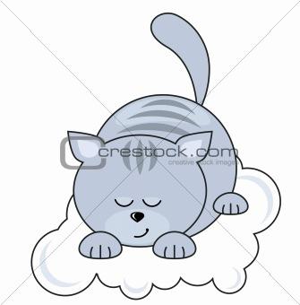 Small  cat sleeping