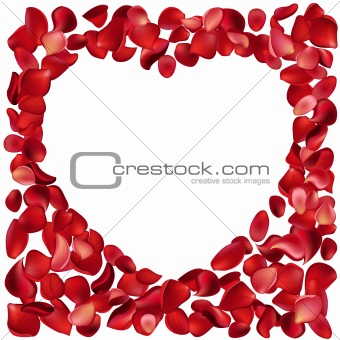 Blank frame made of rose petals