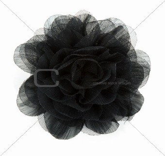 Black flower rose from lace