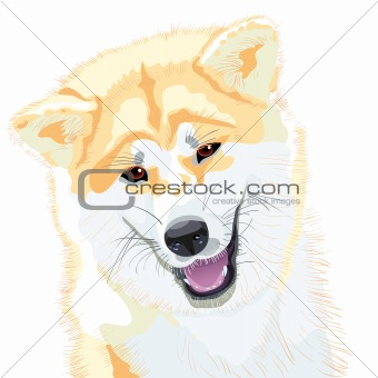 vector sketch Akita Inu Japanese Dog smiles