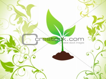abstract green eco plant with soil