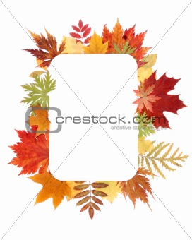 Autumn sheet by frame