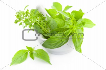 Fresh herbs whith mortar and pestle / isolated on white
