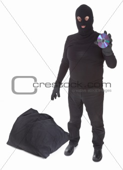 concept of data thief with sack