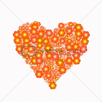 bright orange flowers in heart shape