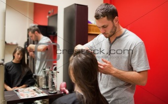 Male hairdresser cutting hair