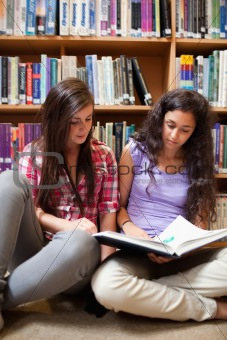 Portrait of female students reading