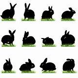 rabbit silhouettes set