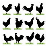 rooster silhouettes set