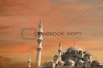 blue mosque in turkey