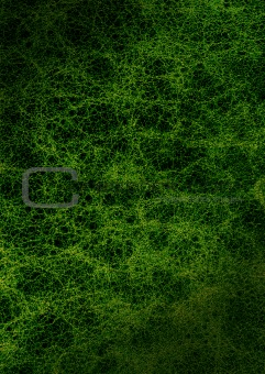 Rich green leather background