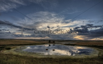 Slough pond and crop