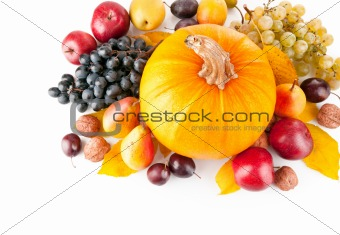 autumnal fruits with yellow leaves