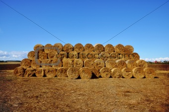 Stacked bales of hay