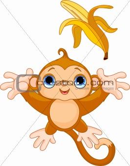Funny Monkey catching banana