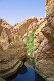 River between rocks in the oasis of Tozeur
