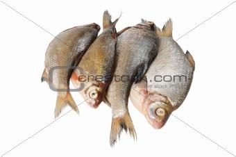 Several fresh freshwater fish