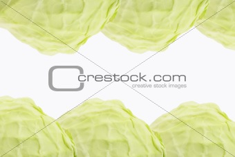 Background pattern of cabbage