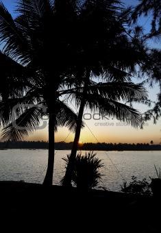 Green Lagoon sunrise portrait Kerala India