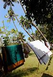 wind blown clothes washing Kerala India
