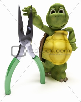 Tortoise with pliers