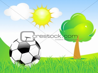 abstract football with green grass & tree