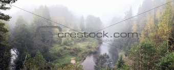 Fog after wild river