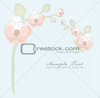 Floral orchid background