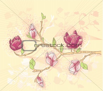 Abstract romantic flower vector background with magnolia branch