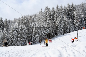 Austrian Alps Mountain skiers
