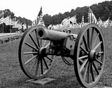 Cannon with Flags