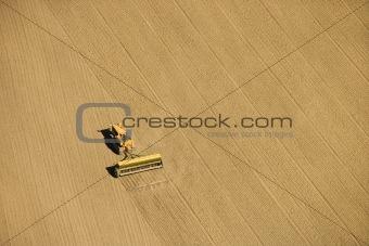 Agricultural farming.