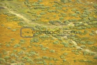 Aerial prairie landscape.