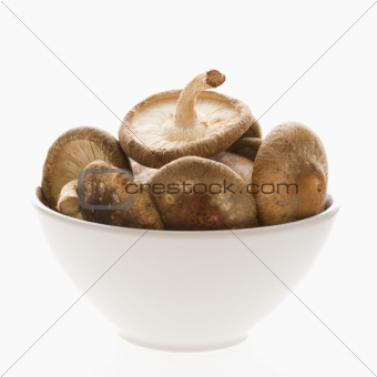 Bowlful of mushrooms.