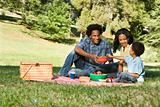 Picnic in park.
