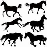 Set of a silhouette of a horse