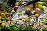 Fish variety