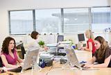 Women working in an office