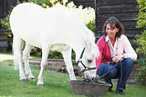 Farmer's Wife Feeding Pony
