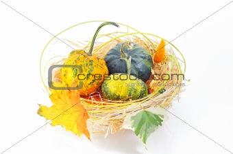 Autumn's basket