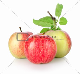 Three ripe apples isolated(5).jpg