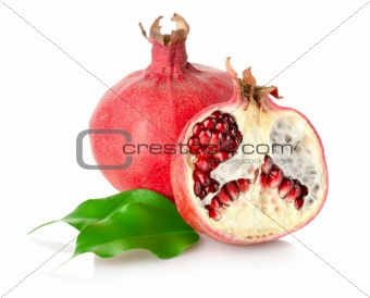 Pomegranate with leaves