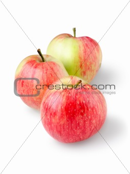Three ripe apples