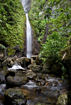 Waterfall on a stream in a tropcial forest in Tahiti