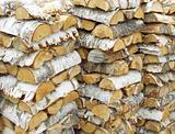Birch logs lumber