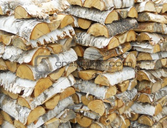 Birch logs lumber