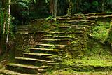 Stone Stairs Leading to a Terrace in Ciudad Perdida, Colombia