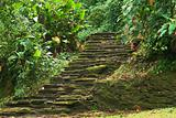 Stone Stairs in Ciudad Perdida, Colombia