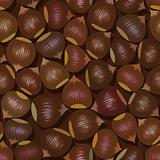 hazelnut-seamless(11).jpg